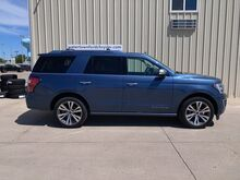 2020_Ford_Expedition_Platinum_ Watertown SD