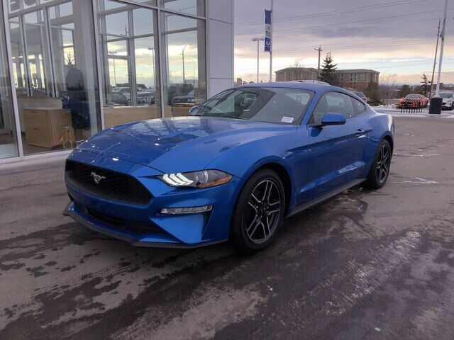 2020 Ford Mustang ECOBOOST /  HAIL SALE !!! Calgary AB
