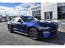 2020_Ford_Mustang_EcoBoost_ Dumas TX