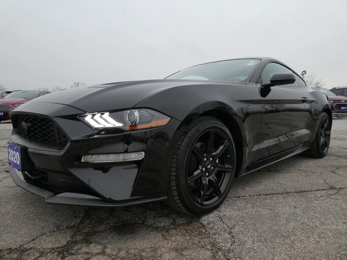 2020 Ford Mustang EcoBoost Navigation Back Up Cam Remote Start Essex ON