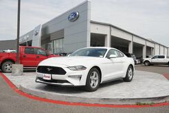 2020_Ford_Mustang_EcoBoost_ Rio Grande City TX