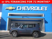 2020_Jeep_Renegade_Trailhawk_ Kimball NE