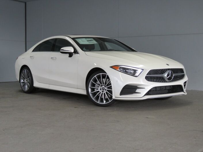 2020 Mercedes-Benz CLS CLS 450 Merriam KS