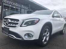 2020_Mercedes-Benz_GLA_GLA 250 4MATIC® SUV_ Yakima WA