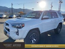 2020_Toyota_4Runner_TRD Off Road Premium_ Bishop CA