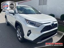 2020_Toyota_RAV4 Hybrid_LTD AWD SUV_ Central and North AL