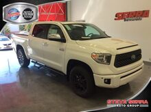 2020_Toyota_Tundra 4WD_1794 Edition_ Central and North AL