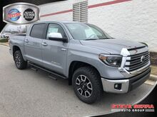 2020_Toyota_Tundra 4WD_LTD CREWMAX_ Decatur AL