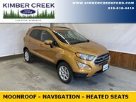 2021 Ford EcoSport SE Pine River MN