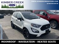 2021 Ford EcoSport SES Pine River MN