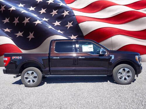2021 Ford F-150 Platinum Tampa FL