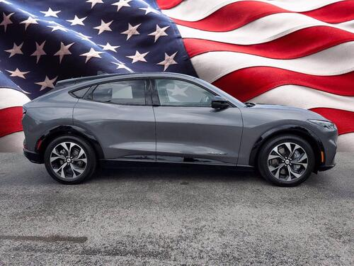 2021 Ford Mustang Mach-E Premium Tampa FL