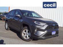 2021_Toyota_RAV4 Hybrid_XLE_  TX