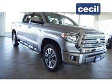 2021_Toyota_Tundra_1794 Edition_  TX