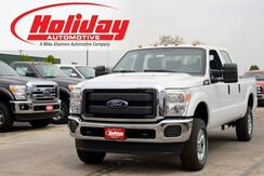 2016 Ford Super Duty F-250 SRW XL Fond du Lac WI