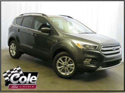 2017 Ford Escape SE 4WD Coldwater MI