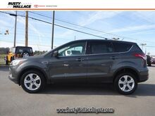 2015 Ford Escape SE Morristown TN