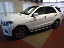 2017 Mercedes-Benz GLE GLE400 Traverse City MI