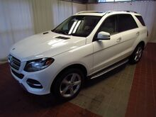 2017 Mercedes-Benz GLE GLE350 Traverse City MI